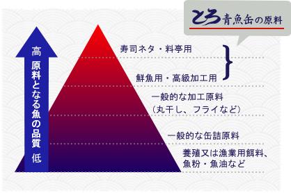 「料原料となる魚の品質」とろ青魚缶の原料:寿司ネタ・料亭用・鮮魚用・高級加工用