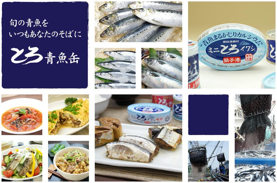 旬の青魚をいつもあなたのそばに「とろ青魚缶」